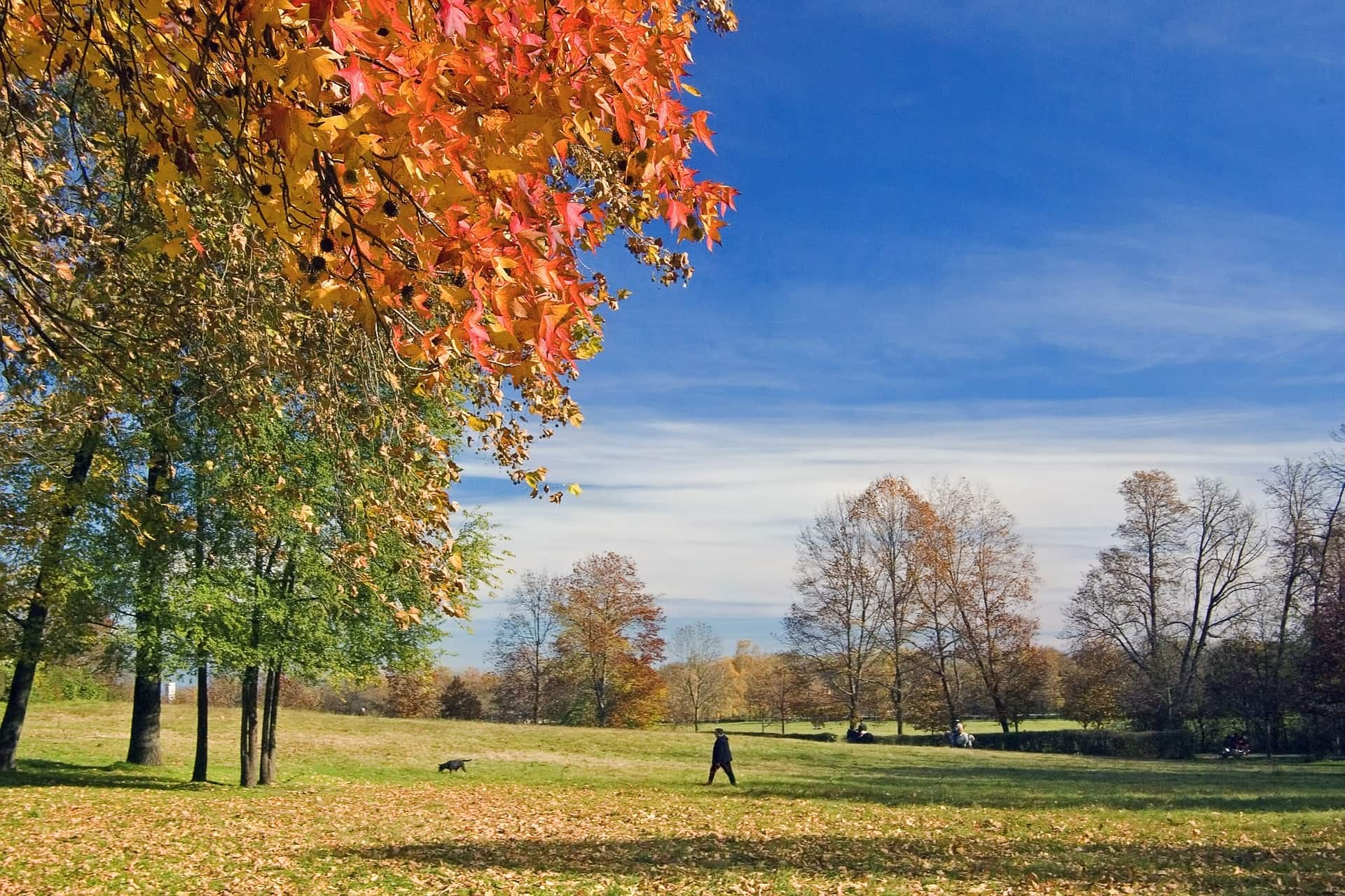 autunno soft